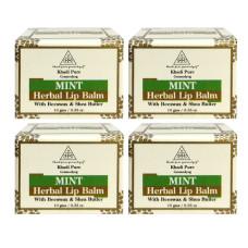 Khadi Pure Herbal Mint Lip Balm - 10g (Set of 4)